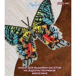 NBFL-043. БАБОЧКА «Урания...