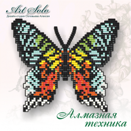 БАТ08.  Chrysiridia rhipheus