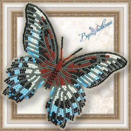 "BGP-004. BUTTERFLY ""Papilio..."