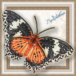 BGP-005. Метелик «Цитозия...