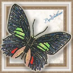BGP-006. Метелик «Parides...