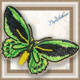 BGP-008. Метелик «Птіцекрил...