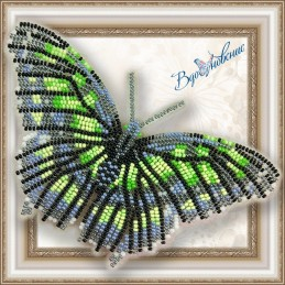 "BGP-013. BUTTERFLY ""Malachite"""