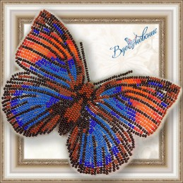 """BGP-015. BUTTERFLY """"Agrias..."""
