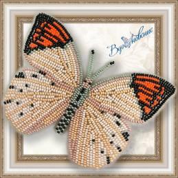 BGP-018. Метелик «Гебомоя...