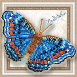 BGP-019. Метелик «Прецис...