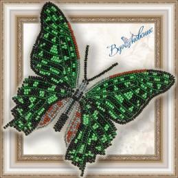 BGP-023. Метелик «Графія...