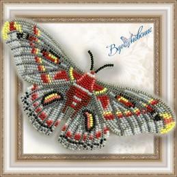 BGP-026. Метелик «Гиалофора...
