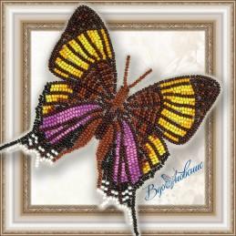BGP-027. Метелик «Марпезия...