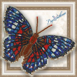 """BGP 028. BUTTERFLY """"Red..."""