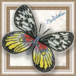 BGP-029. Метелик «Делія Тисбе»