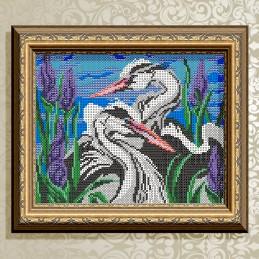 VKA4021. Herons