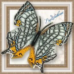 BGP-039. Метелик «Цирестис...