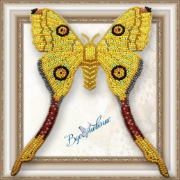 BGP-041. Метелик...