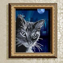 VKA4059. Cunning Cat