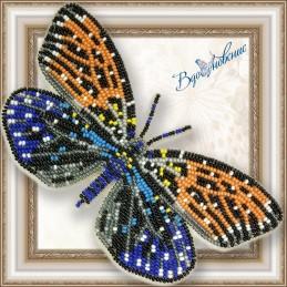 BGP-045. Метелик «Эрасмия...