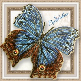 "BGP-048. BUTTERFLY ""Salamis..."