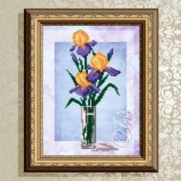VKA4153. Irises