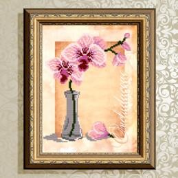 VKA4157. Orchid