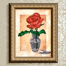 VKA4159. Роза