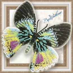 """BGP-053. BUTTERFLY """"Alcides..."""