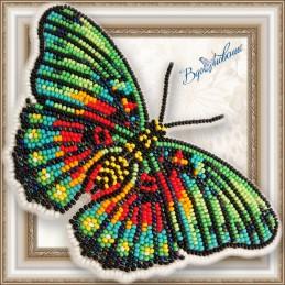 BGP-063. БАБОЧКА «Euphaedra...