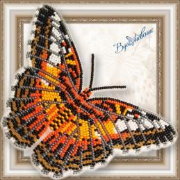 BGP-065. Метелик «Сільвія...