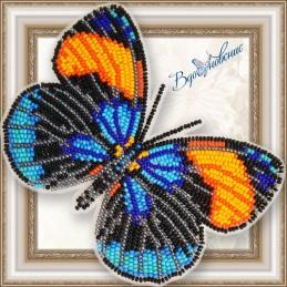 BGP-069. Метелик «Калликора...