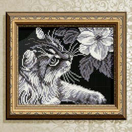 АТ5509. Кіт з магнолією