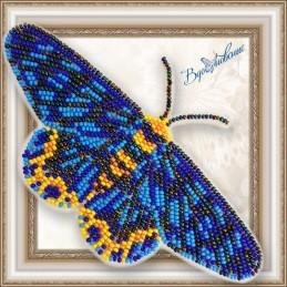 BGP-070. Метелик «Dysphania...