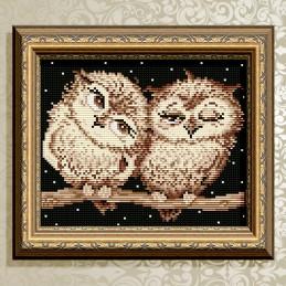 АТ5538. Owls