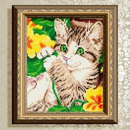 АТ5553. Kitten in flowers