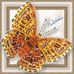 BGP-077. Метелик «Zemeros...