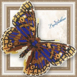 """BGP-080. BUTTERFLY """"Apatura..."""