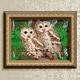 AT3018. Owls