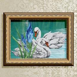 VKA3006. Swan couple