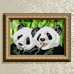 VKA3024. Pandas.
