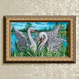 VKA3028. Swan fidelity.