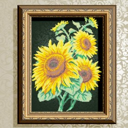 VKA3065. Sunflowers