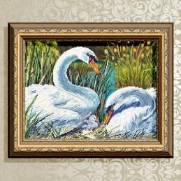VKA3084. Swan family