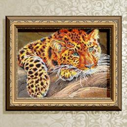 VKA3085. Jaguar