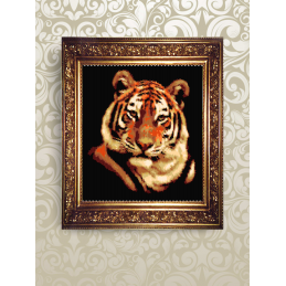"NMK005. The ""tiger"". Set..."