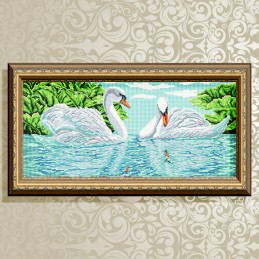 VKA3100. Swans