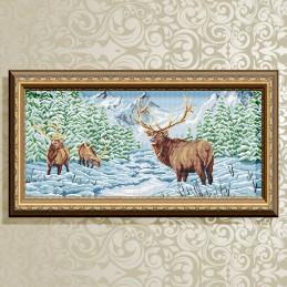 VKA3101. Deer in winter forest