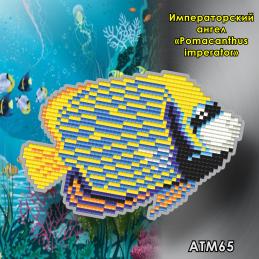 ATM65. Children's magnet...