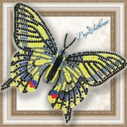 "BGP-002. BUTTERFLY ""MACHAON"""
